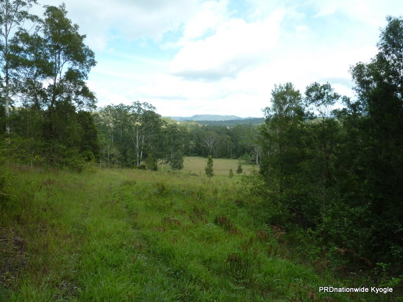 98 Campbell Road, Stony Chute NSW 2480