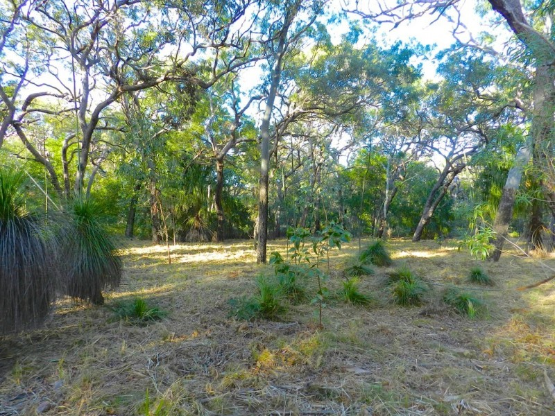 Lot 135 Bloodwood Ave Sth Sunrise, Agnes Water QLD 4677