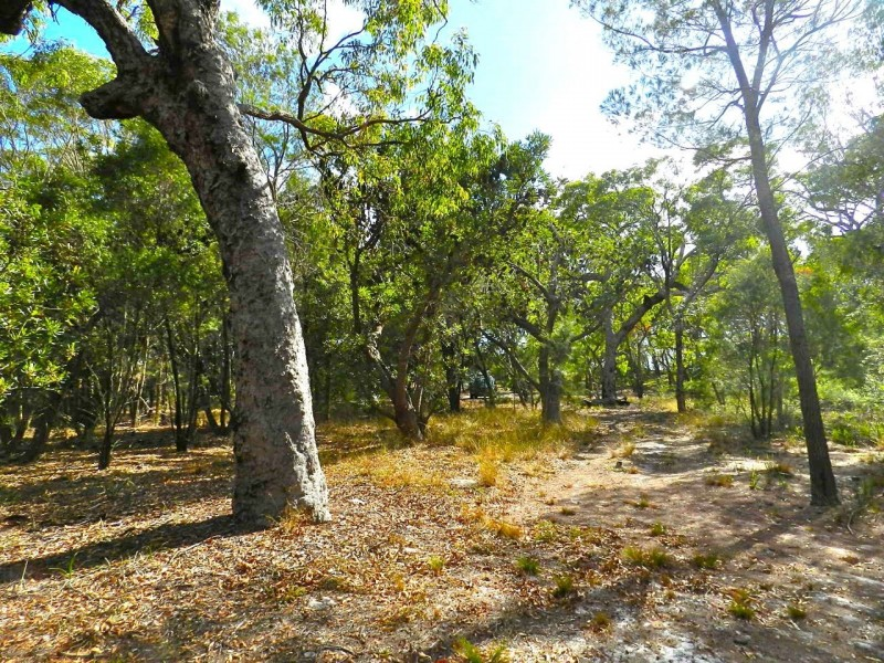 Lot 22 Bloodwood Ave Nth Sunrise, Agnes Water QLD 4677