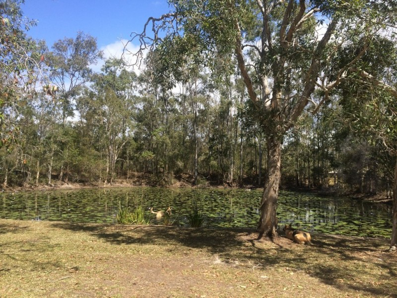 74 Mcghee Crescent, Agnes Water QLD 4677