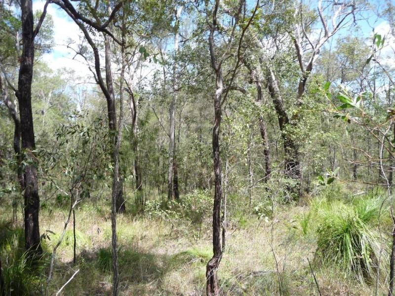 1508 Tableland Rd, Mount Maria QLD 4674