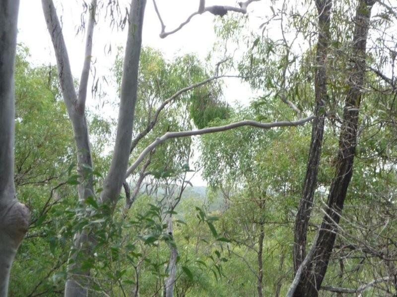 L185 Innamincka Way, Agnes Water QLD 4677