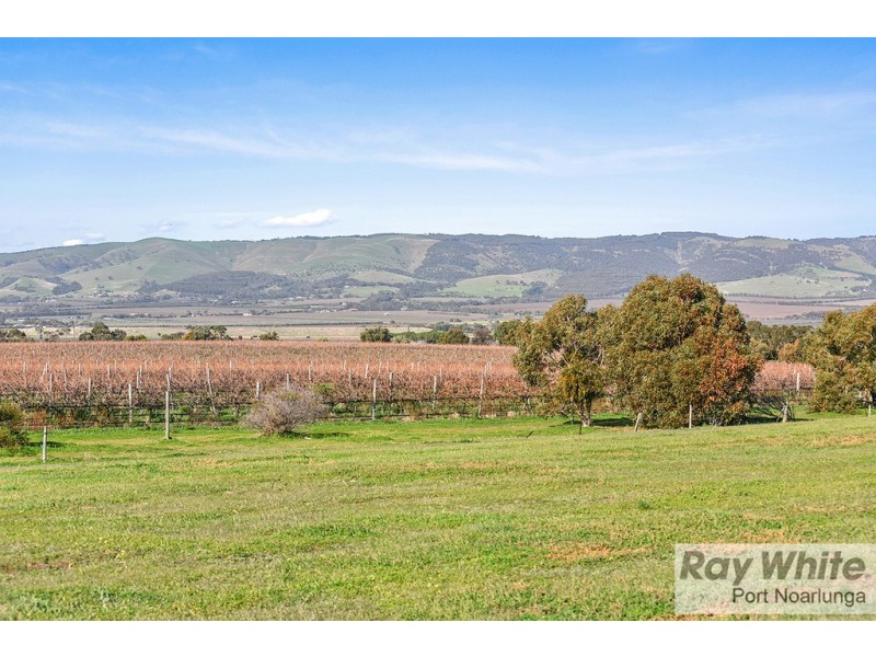 3 Teal Close, Aldinga Beach SA 5173