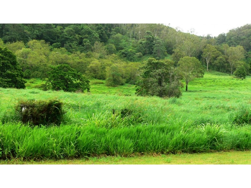 Lot 5 Brandy Creek Road, Brandy Creek QLD 4800