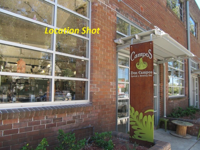 15-17 Fountain Street, Alexandria NSW 2015