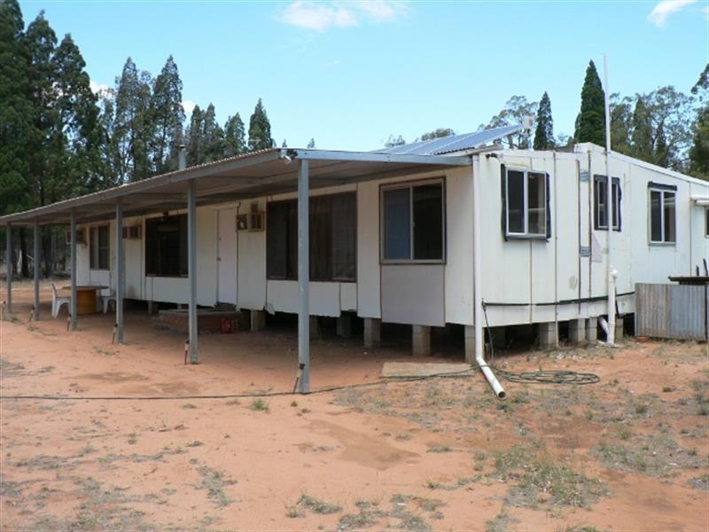 135 L  Wattle Rd, Elong Elong NSW 2831