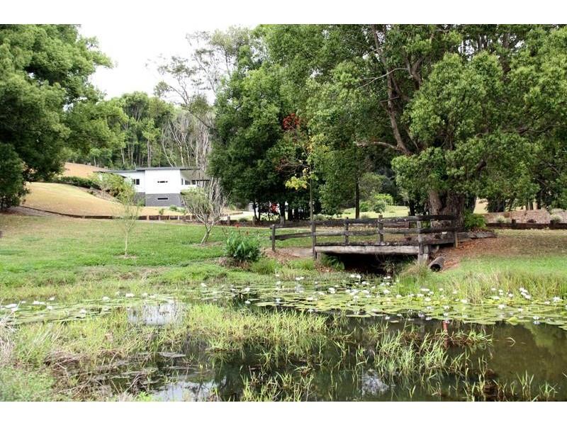 250 Tyalgum Rd, Eungella NSW 2484