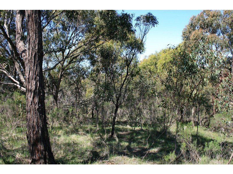 lot 5 Goodenia Court, Broadford VIC 3658