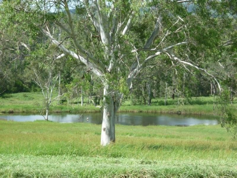 Lot 1/ Fosters Lane, Anderleigh QLD 4570