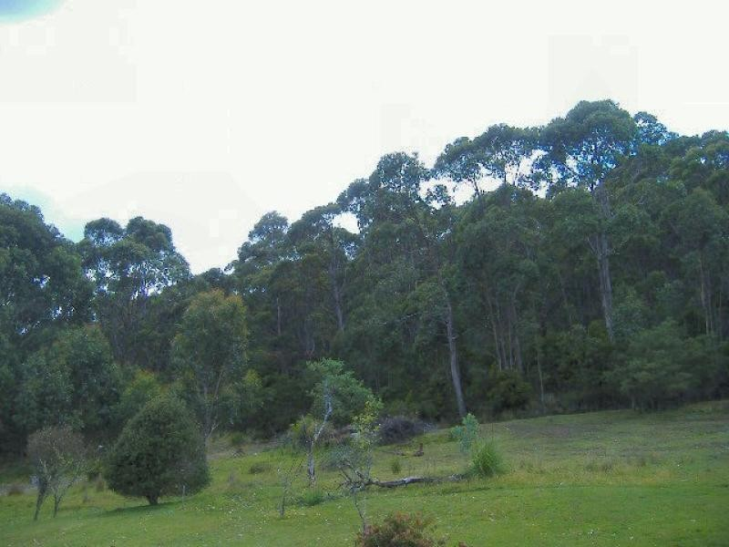 LOT 8/0 ADVENTURE BAY ROAD, Adventure Bay TAS 7150