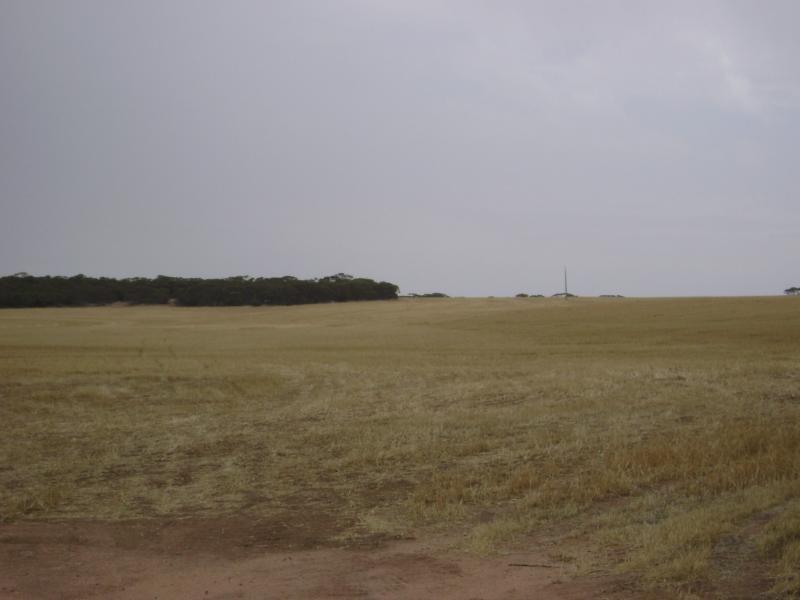 Yalanda SA 5641