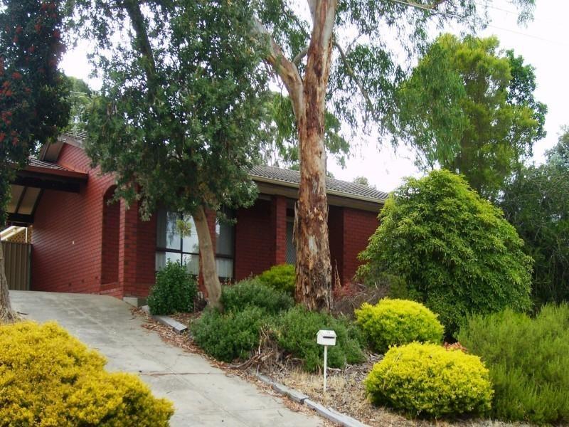 13 Pine Drive, Aberfoyle Park SA 5159