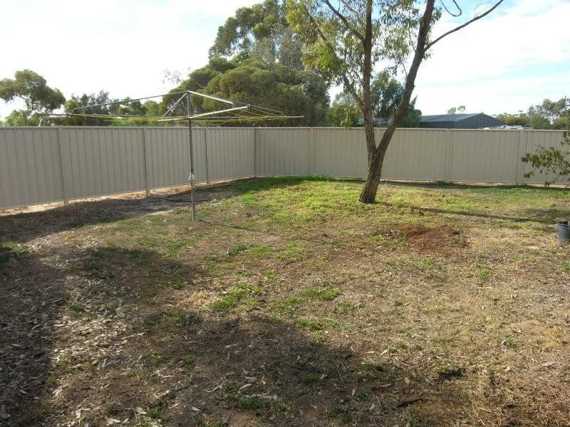 Lot 100 Schaefer Street, Freeling SA 5372