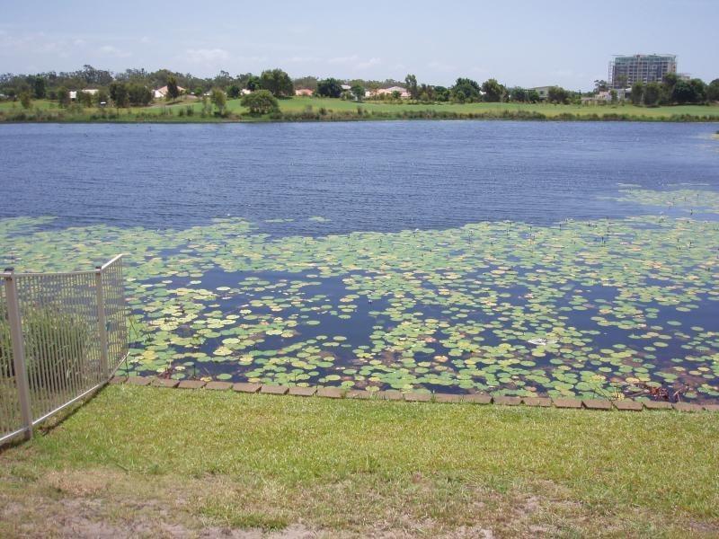 107 MAHOGANY DR,, Pelican Waters QLD 4551