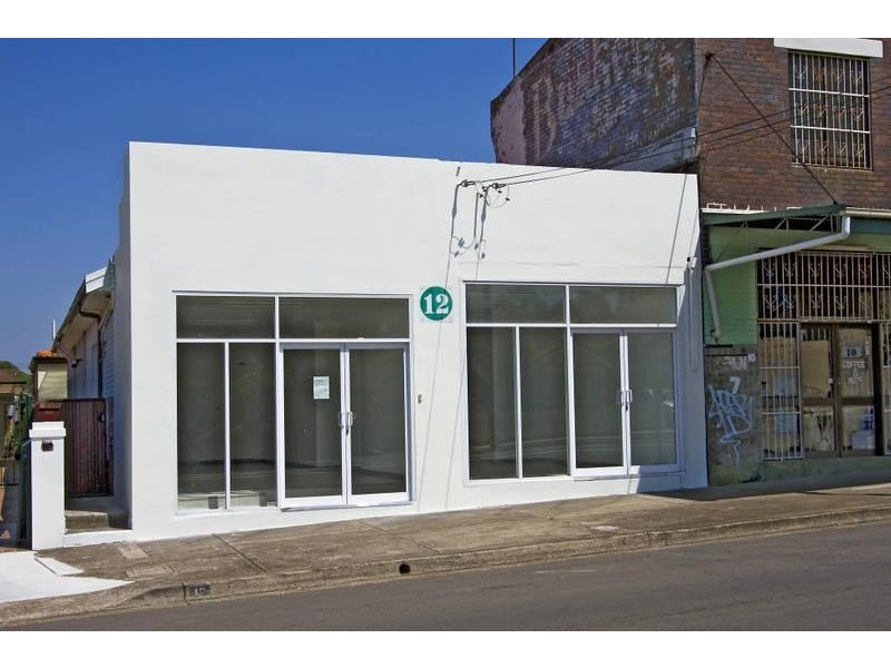 12 King Street, Ashbury NSW 2193