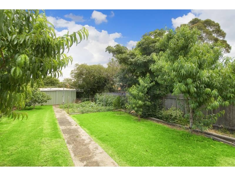 44 FOURTH AVENUE, Ashbury NSW 2193