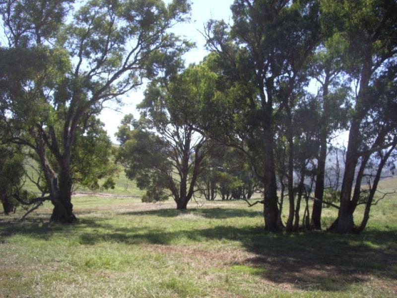 Golspie NSW 2580