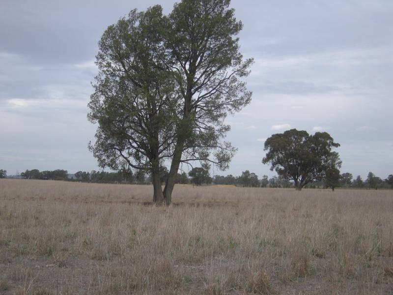 . HOWLONG BALLDALE ROAD, Albury NSW 2640