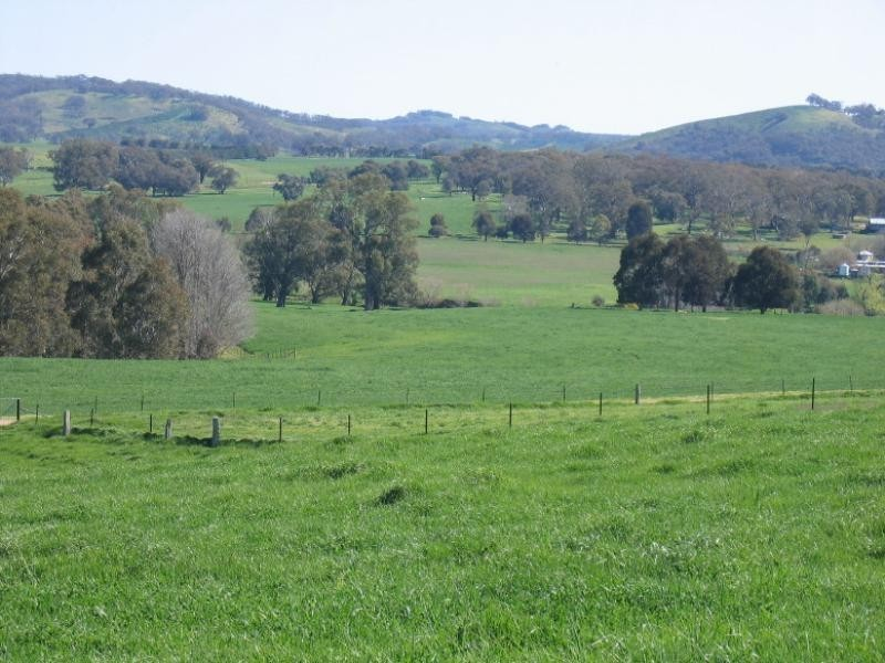 40 SPRING CREEK ROAD40 SPRING CREEK ROAD, Adelong NSW 2729