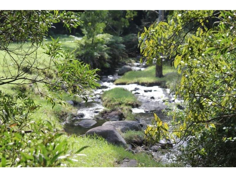 246b Martinvale Lane, Jaspers Brush NSW 2535