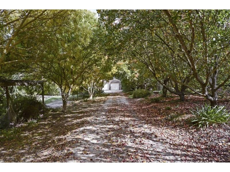 561 Forreston Road, Forreston SA 5233