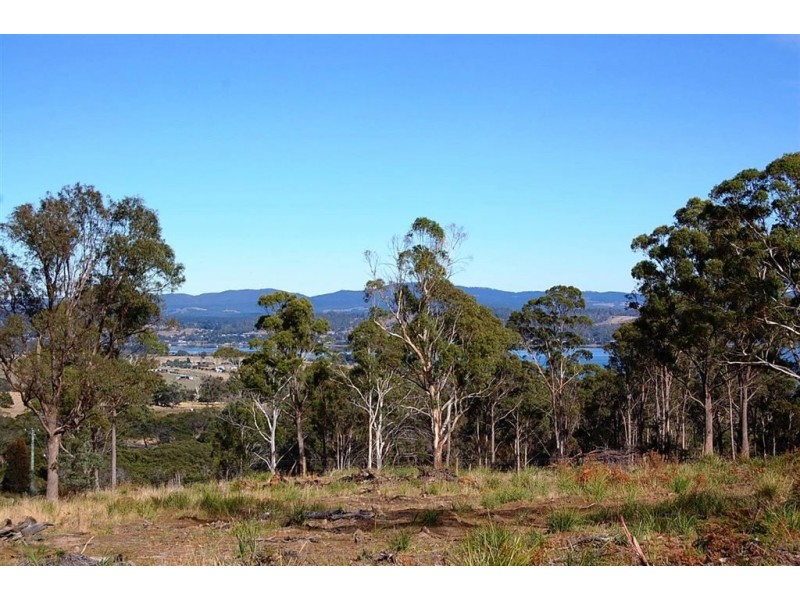 1199 Windermere Road, Swan Bay TAS 7252