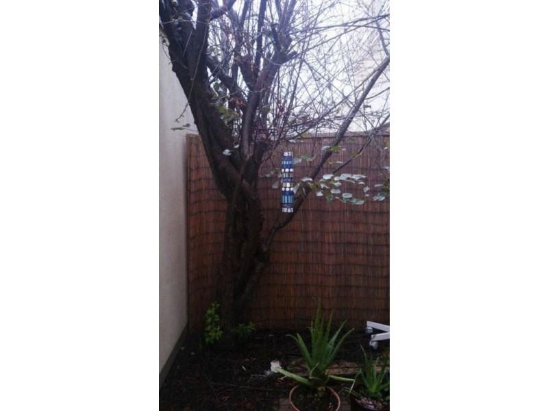 21A Willcox Street, Adelaide SA 5000