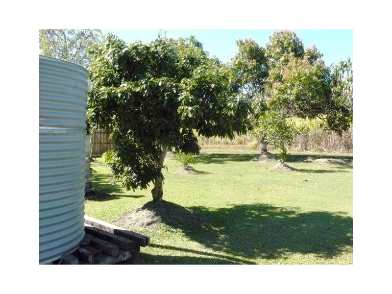29 Mt.Charlton Road, Calen QLD 4798