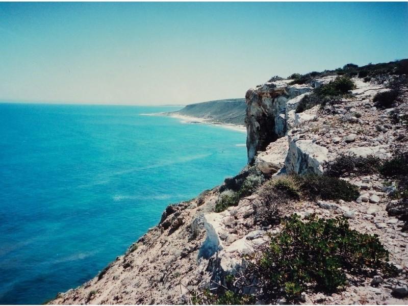 98 White Cliffs Road, Sandy Gully WA 6535
