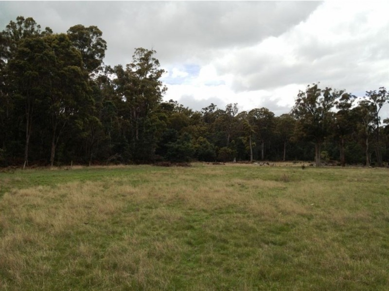 Brocklesby Bush, Elphinstone Road, Cressy TAS 7302