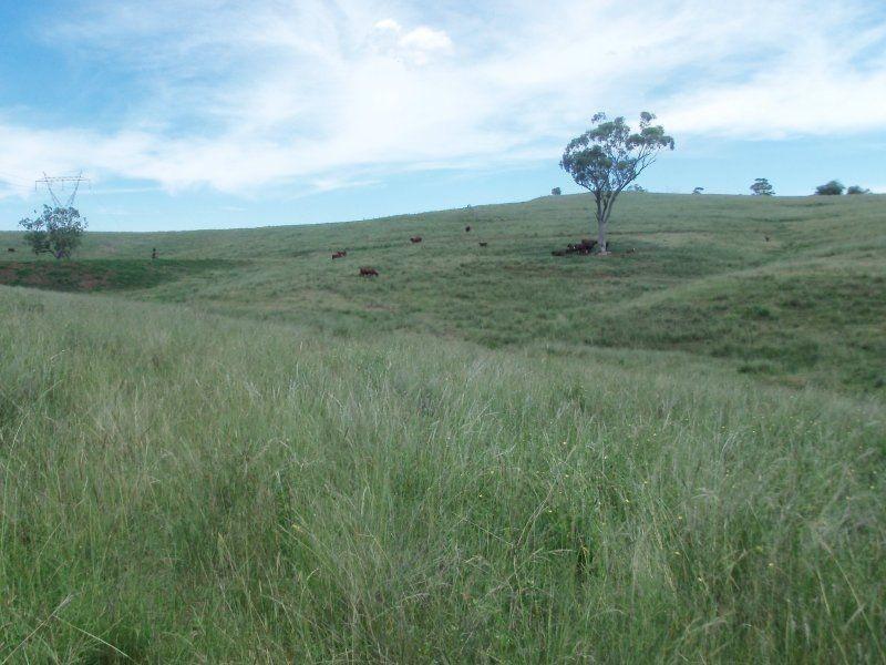 . 'Rouchel Gap Road', Aberdeen NSW 2336