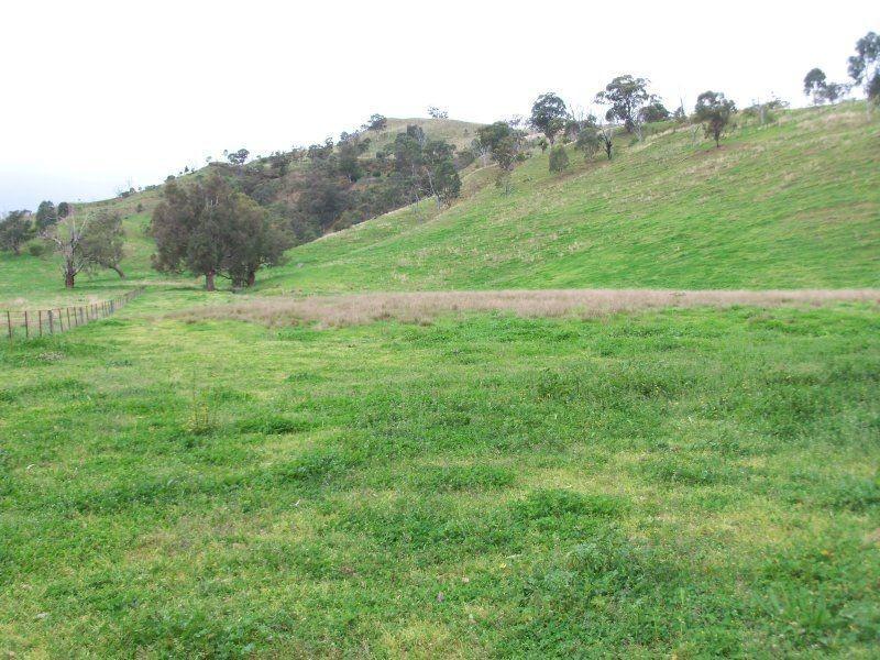 . 'Kenalea' Rouchel Via, Aberdeen NSW 2336