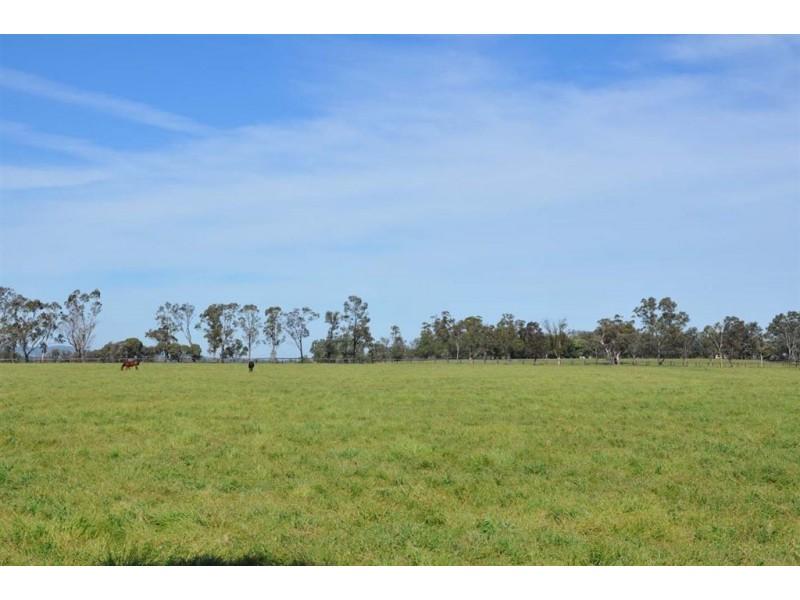 "141 Nandowra Rd, ""Orana"", Scone NSW 2337"