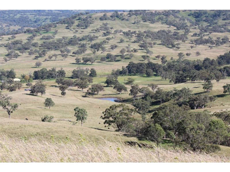 . Kars Springs and Yarrawin Station, Scone NSW 2337
