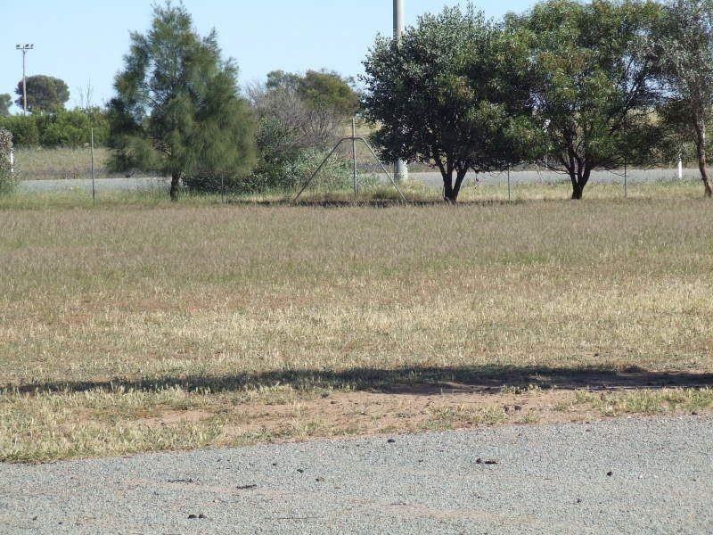 2 Driscoll Road, Narrandera NSW 2700
