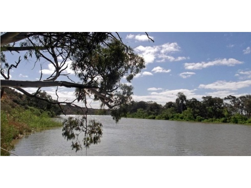 Lot 221 Zadow Road, Caloote SA 5254