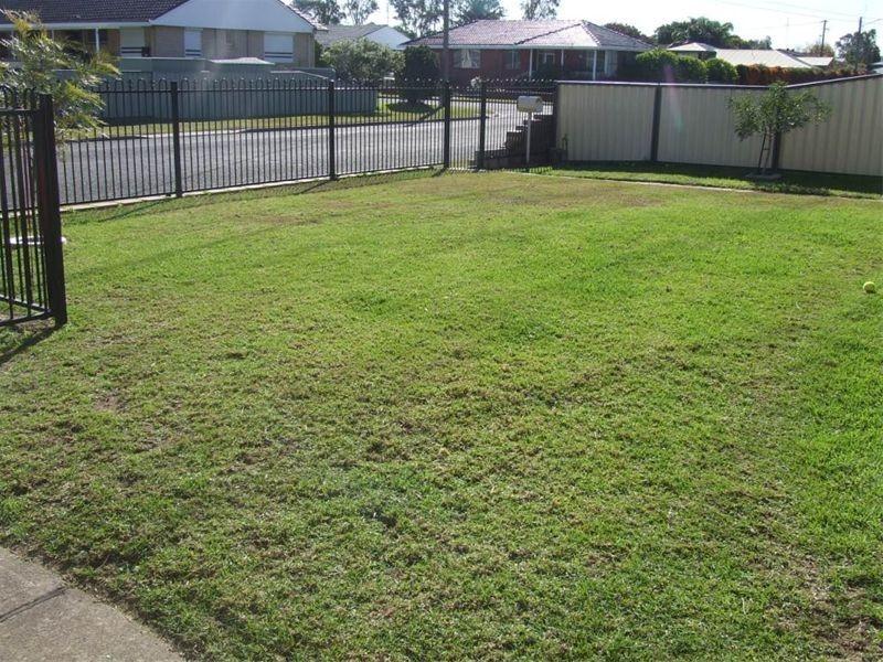 42 Orchard Avenue, Singleton NSW 2330