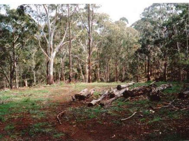 40 Florabunda, Nethercote NSW 2549