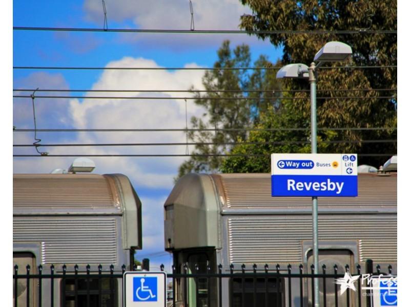 85 Sphinx Avenue, Revesby NSW 2212