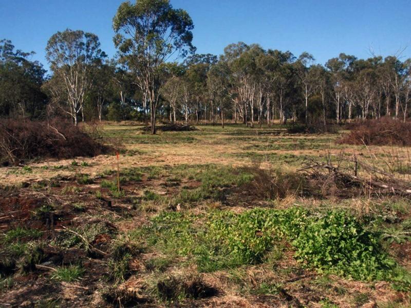 Lot 8 Oil Seeds Road, Memerambi QLD 4610