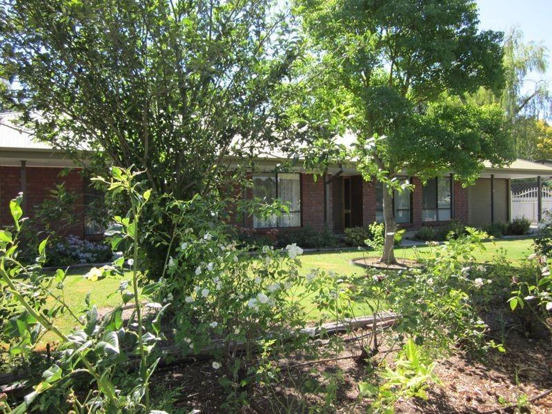 20 Rogers Street, Freeling SA 5372