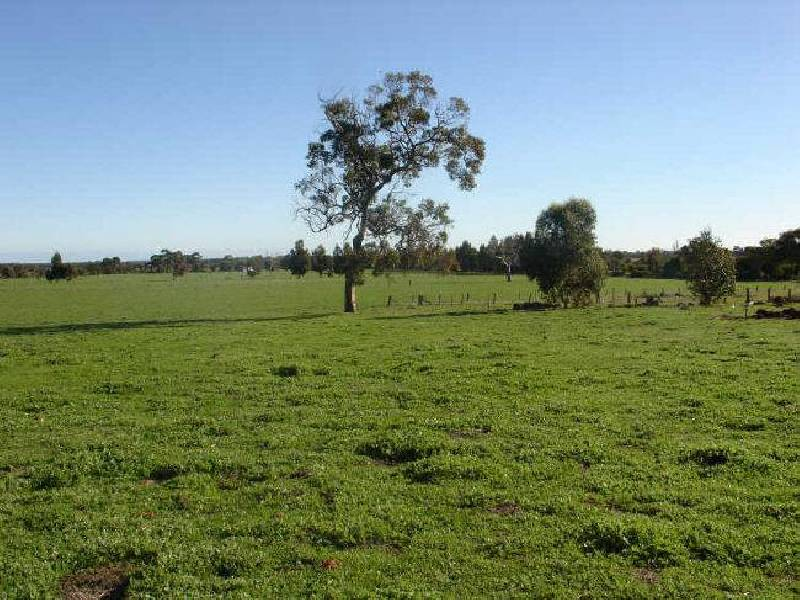 Lot 101 Piggott Road Sabina River, Abba River WA 6280