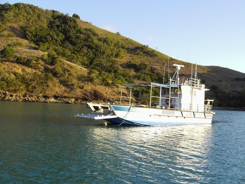 St Bees Island Mackay