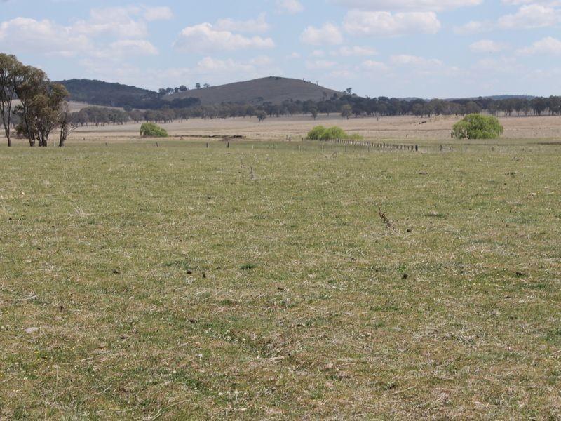 431 Ruwenzori Road, Wellingrove NSW 2370