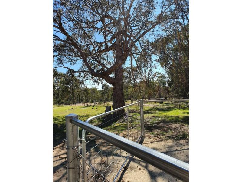 29 Catarrh Creek Road, Torrington NSW 2371