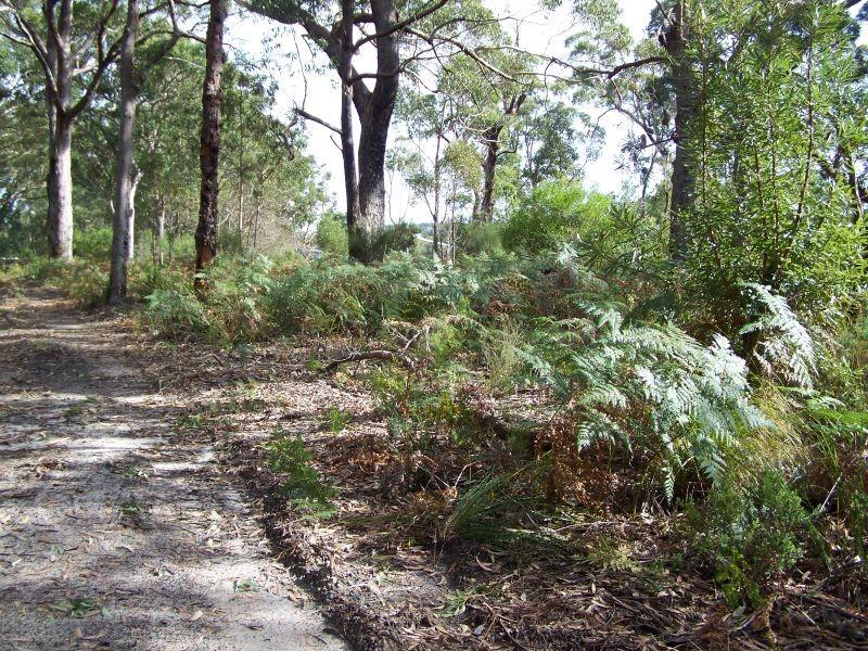 Lot 9 Nardoo Street, Pindimar NSW 2324