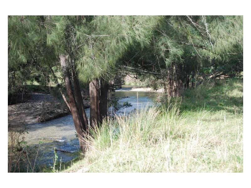1770 Nulla Nulla Creek Rd, Bellbrook NSW 2440