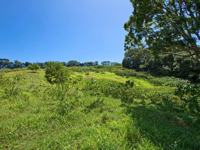 540 Duranbah Road, Duranbah NSW 2487