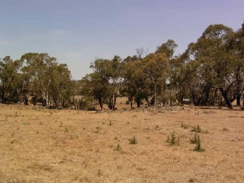 79 Clover Ridge Road, Beneree NSW 2798