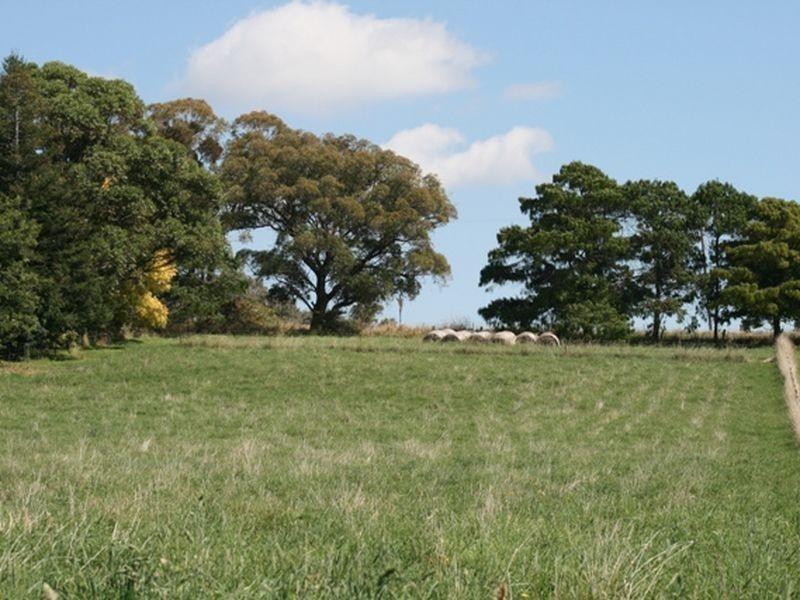 204 Borenore Road, Nashdale NSW 2800